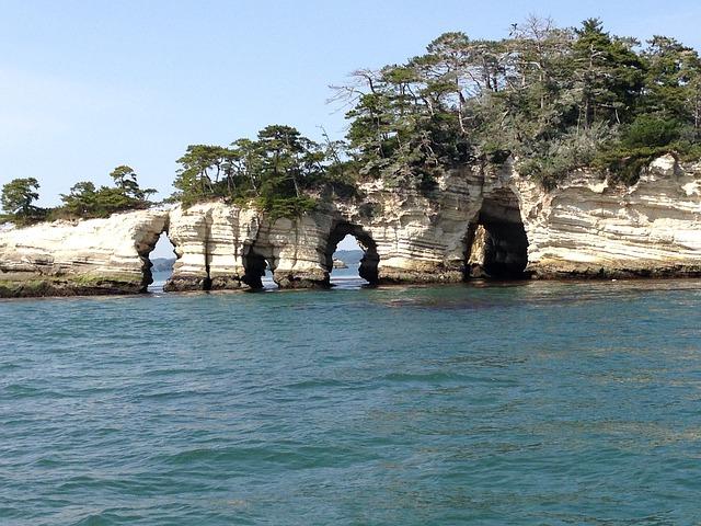 松島から塩釜へ、周遊船でカモメと島々を楽しめました。