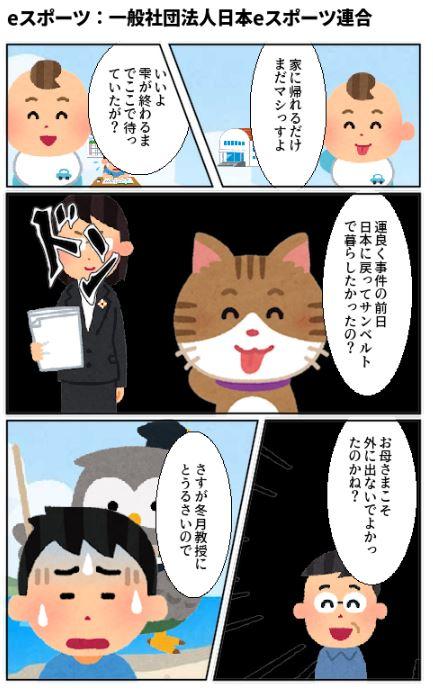 eスポーツ:一般社団法人日本eスポーツ連合
