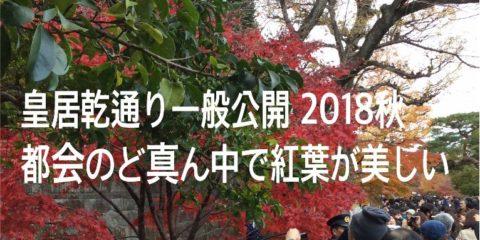 皇居乾通り一般公開 2018秋 都会のど真ん中で紅葉が美しい!