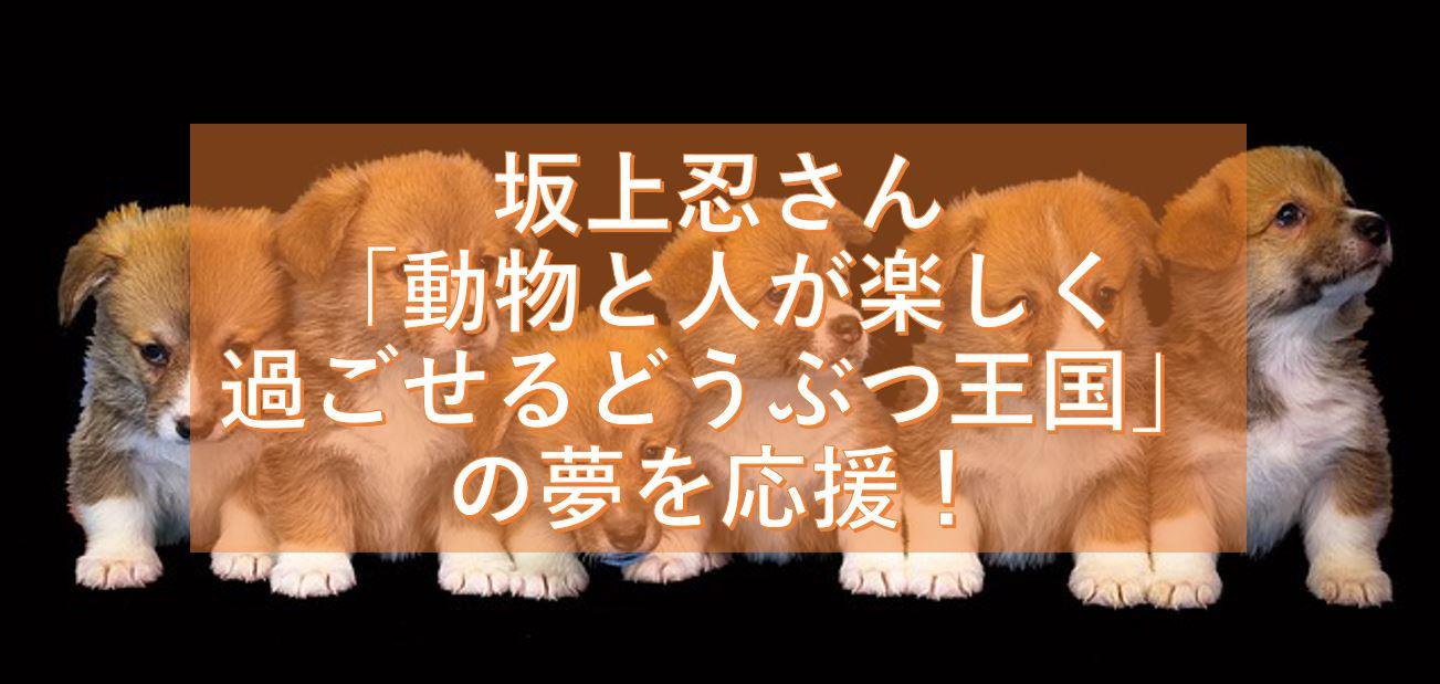 坂上忍さんの犬の社会活動や「動物と人が楽しく過ごせるどうぶつ王国」の夢を応援したい!
