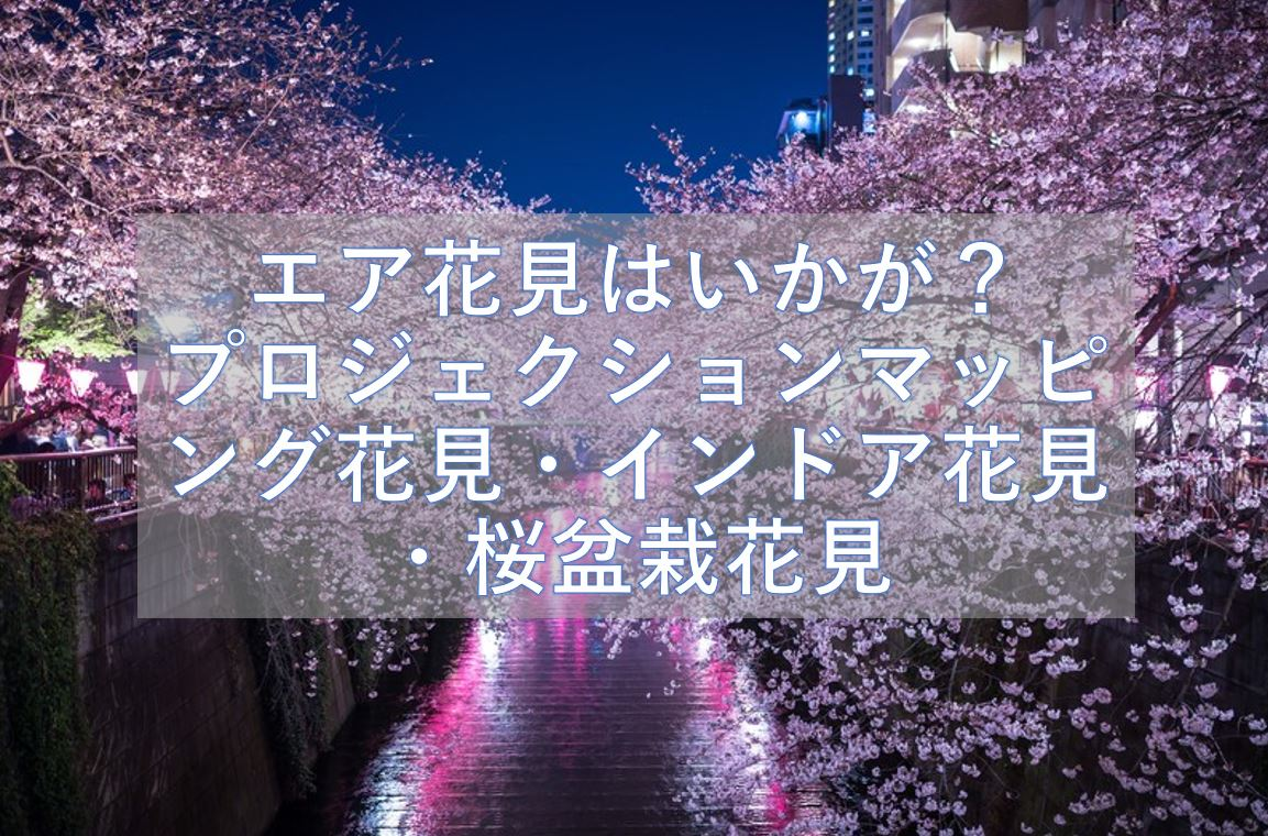 外出はおっくう 今年はエア花見はいかが? プロジェクションマッピング花見・インドア花見・桜盆栽花見
